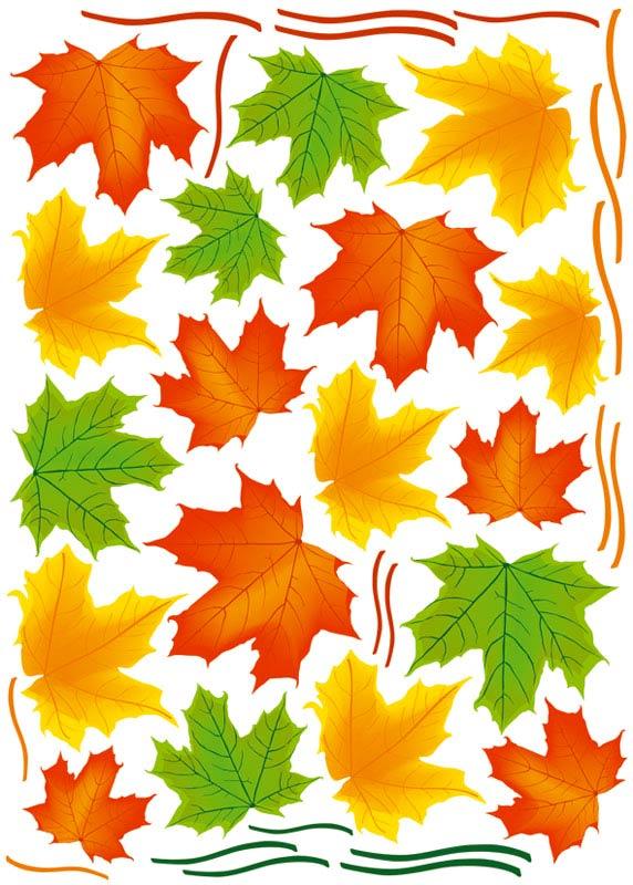 Dimex ST1 013 Samolepicí dekorace na zeď Maple Leaves, 50x70 cm (javorové listy)