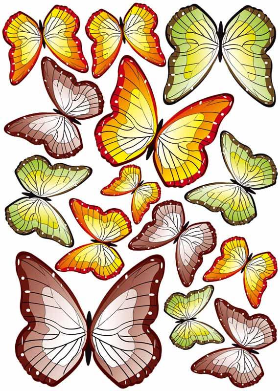 Dimex ST1 015 Samolepicí dekorace na zeď Butterflies, 50x70 cm (motýli)