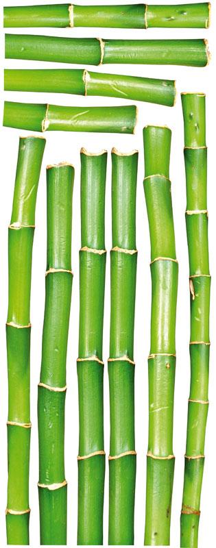 Dimex ST2 016 Samolepicí dekorace na zeď Bamboo, 65x165 cm (bambus)