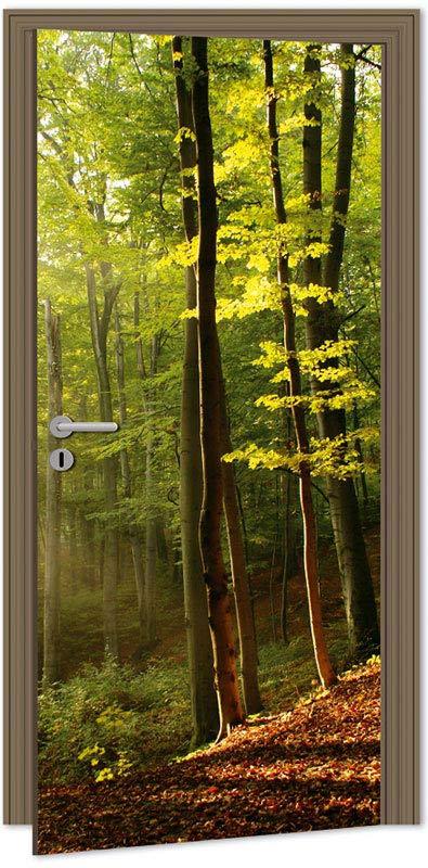 Dimex D-003 Samolepicí fototapeta na dveře FOREST, velikost 95x210cm (LES)